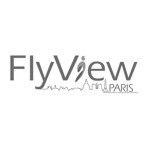 Logo FLYVIEW PARIS